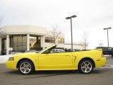 2001 Zinc Yellow Metallic Ford Mustang Cobra Convertible #24874989
