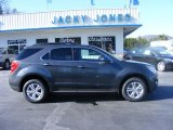 2010 Cyber Gray Metallic Chevrolet Equinox LT #24874975