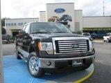 2010 Tuxedo Black Ford F150 XLT SuperCrew #24898790