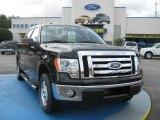2010 Tuxedo Black Ford F150 XLT SuperCrew #24898787