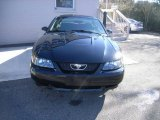 2003 Black Ford Mustang V6 Coupe #24901380