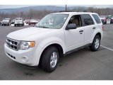 2009 White Suede Ford Escape XLT V6 4WD #24944935
