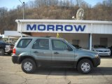2006 Titanium Green Metallic Ford Escape XLS 4WD #25062576