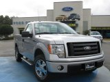 2010 Ingot Silver Metallic Ford F150 STX Regular Cab #25062501