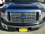 2010 Tuxedo Black Ford F150 XLT SuperCrew #25062549