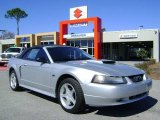 2001 Silver Metallic Ford Mustang GT Convertible #2513869