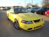 2003 Zinc Yellow Ford Mustang Cobra Convertible #2517956