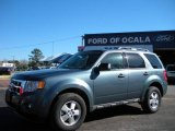 2010 Steel Blue Metallic Ford Escape XLT V6 #25195996