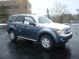 2010 Steel Blue Metallic Ford Escape XLT 4WD #25196043