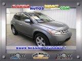 2005 Platinum Metallic Nissan Murano SL #25247978