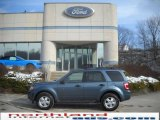 2010 Steel Blue Metallic Ford Escape XLT V6 4WD #25299773