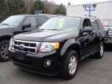2009 Black Pearl Slate Metallic Ford Escape XLT V6 4WD #25401169