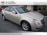 2009 Gold Mist Cadillac CTS Sedan #25415025