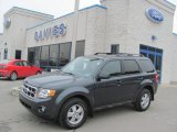 2009 Black Pearl Slate Metallic Ford Escape XLT V6 4WD #25500989