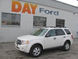 2009 White Suede Ford Escape XLT V6 4WD #25580825