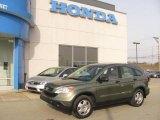 2008 Green Tea Metallic Honda CR-V LX 4WD #25580698