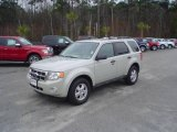 2009 Light Sage Metallic Ford Escape XLT V6 #25632161