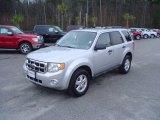 2009 Brilliant Silver Metallic Ford Escape XLT V6 #25632162