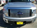 2010 Ingot Silver Metallic Ford F150 XLT SuperCrew 4x4 #25631875