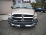 2005 Light Almond Pearl Dodge Ram 1500 ST Regular Cab #25710064