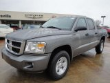 2010 Mineral Gray Metallic Dodge Dakota ST Crew Cab #25752349