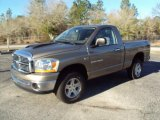 2006 Light Khaki Metallic Dodge Ram 1500 SLT Regular Cab 4x4 #25752425