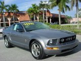 2006 Tungsten Grey Metallic Ford Mustang V6 Premium Coupe #25841577