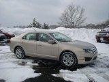 2010 Smokestone Metallic Ford Fusion SE #25891074