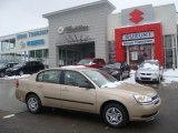 2005 Light Driftwood Metallic Chevrolet Malibu Sedan #25891105
