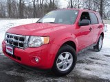 2009 Sangria Red Metallic Ford Escape XLT #25920180