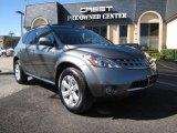 2006 Platinum Pearl Metallic Nissan Murano SL #25964751
