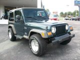 2006 Jeep Green Metallic Jeep Wrangler X 4x4 #26068257