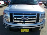 2010 Ingot Silver Metallic Ford F150 XLT SuperCrew #26068167