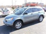 2010 Opal Sage Metallic Honda CR-V EX #26068587
