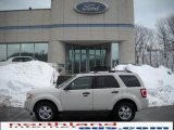 2009 White Suede Ford Escape XLT V6 4WD #26068044