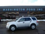 2009 Light Sage Metallic Ford Escape XLT V6 4WD #26125647