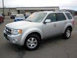 2009 Brilliant Silver Metallic Ford Escape Limited V6 4WD #26125392