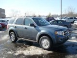 2010 Steel Blue Metallic Ford Escape XLT 4WD #26177358