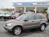 2010 Urban Titanium Metallic Honda CR-V EX #26210423
