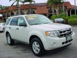 2009 White Suede Ford Escape XLT V6 #26258288