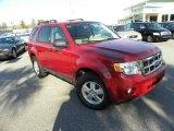 2009 Sangria Red Metallic Ford Escape XLT V6 4WD #26258438