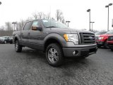 2010 Sterling Grey Metallic Ford F150 FX4 SuperCrew 4x4 #26258328