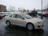 2010 Smokestone Metallic Ford Fusion SEL #26307423