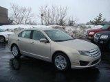 2010 Smokestone Metallic Ford Fusion SE #26307425