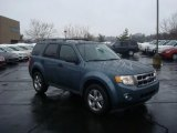 2010 Steel Blue Metallic Ford Escape XLT V6 4WD #26307436