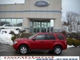 2009 Sangria Red Metallic Ford Escape XLT V6 4WD #26355482