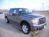 2010 Sterling Grey Metallic Ford F150 FX4 SuperCrew 4x4 #26355982