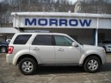 2009 Light Sage Metallic Ford Escape Limited V6 4WD #26355550