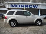 2009 Light Sage Metallic Ford Escape Limited V6 4WD #26355551