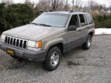 Light Driftwood Satin Glow Jeep Grand Cherokee in 1996